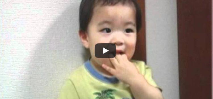 食育<1>『食べ方』を通した食育~ 佐賀 小児歯科 子供歯医者